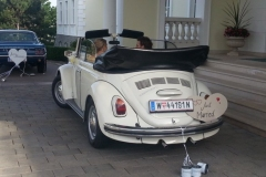 Hochzeitautos-Eventbilder_016
