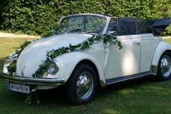 VW-Kaefer-Cabrio-Hochzeitswagen-1